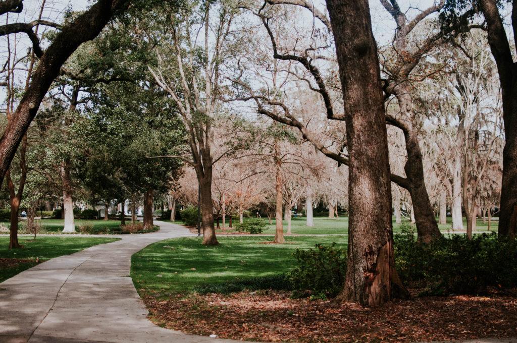 parco attraversato da un percorso accessibile