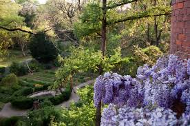 orto botanico brera